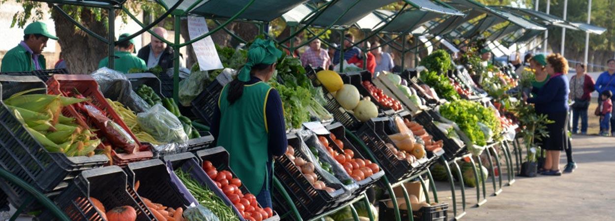 Cómo se explica el boom de las ferias de agricultura familiar en Cusco