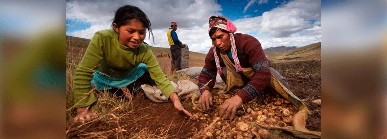 Comisión Agraria priorizará la titulación de tierras agrícolas y el impulso de la asociatividad y el cooperativismo