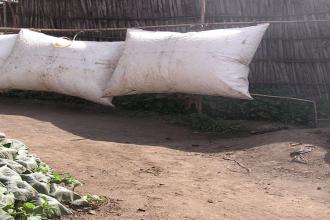 El biogás es una alternativa más ecológica que otras energías en la cocción de alimentos