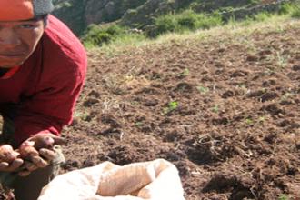 Campesinos exigen al presidente Martin Vizcarra declarar en emergencia al agro cusqueño