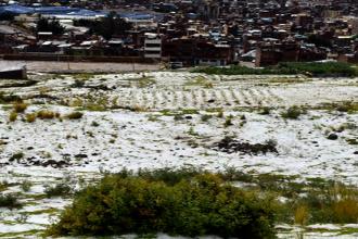 EMERGENCIA   Fuertes lluvias afectaron 56 mil hectáreas de cultivos en Puno