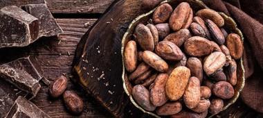 El Cacao es el mejor producto en el Perú